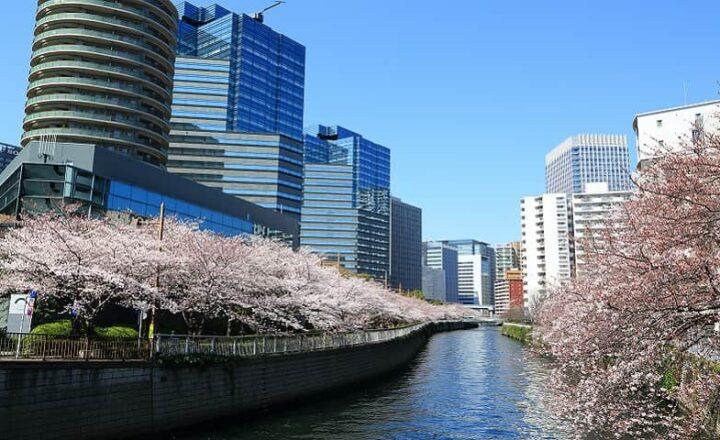 東京都目黒区の不用品回収業者紹介